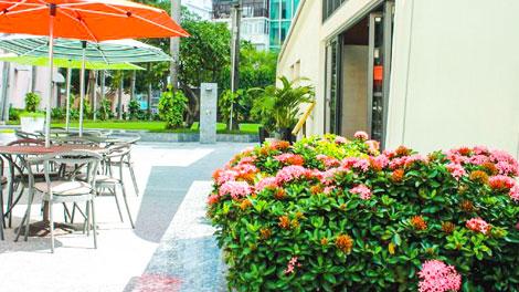 Cây xanh bởi Nhà xanh cho Lotte Legend Hotel Saigon