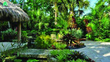 vườn nhiệt đới